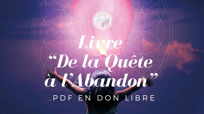 """Livre-""""De-la-Quête-à-l'Abandon""""-pdf-en-don-libre.jpg"""
